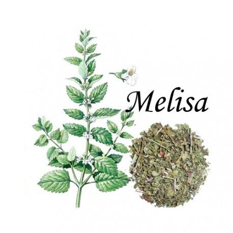 Melisa Caja 20 Bolsitas