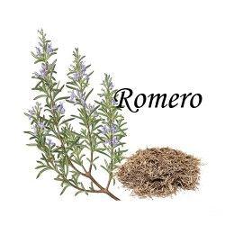 Romero Caja 20 Bolsitas