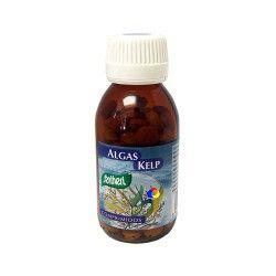 Algas Kelp Comprimidos