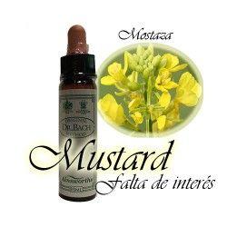 Mustard - Mostaza 10 ml.