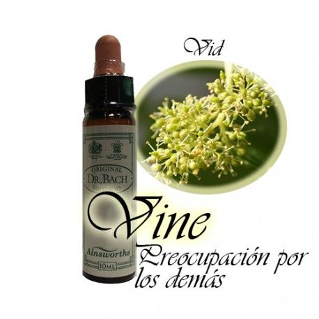 Vine - Vid 10 ml.