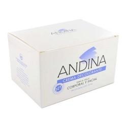ANDINA CREMA DECOLORANTE 100 ML.