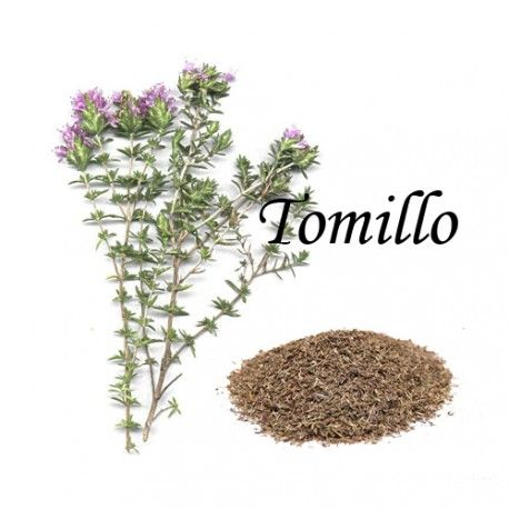 Tomillo Caja 20 Bolsitas