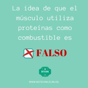 MUSCULO-UTILIZA-PROTEINAS-FALSO